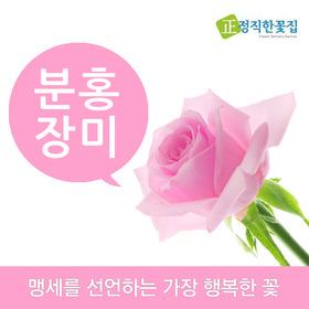 분홍장미 바구니