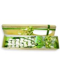 하얀장미 꽃상자